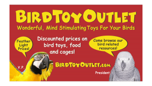 Bird Toy Outlet Business Card